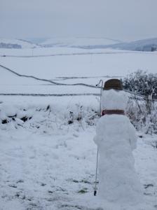 Snow Shepherd Longbank 2008