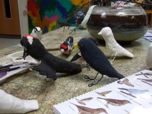 Mod rock birds in the making
