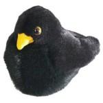 rspb_blackbird_big_grande
