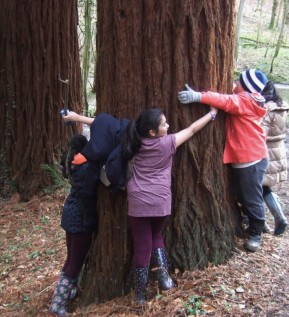 March 2016 tree hug Hargate at ARVON (74)