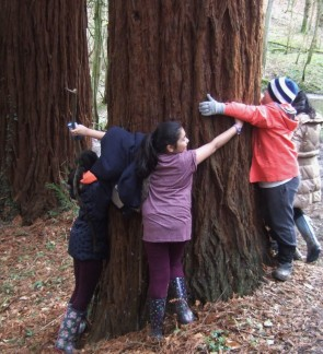 March 2016 tree hug Hargate at ARVON (74)