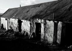 The Dark Farms poem
